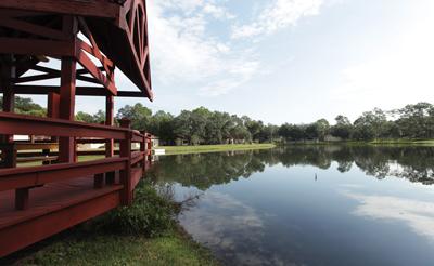 Timber Pines Homeowners Association lake