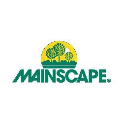 mainscape-250x250.jpg